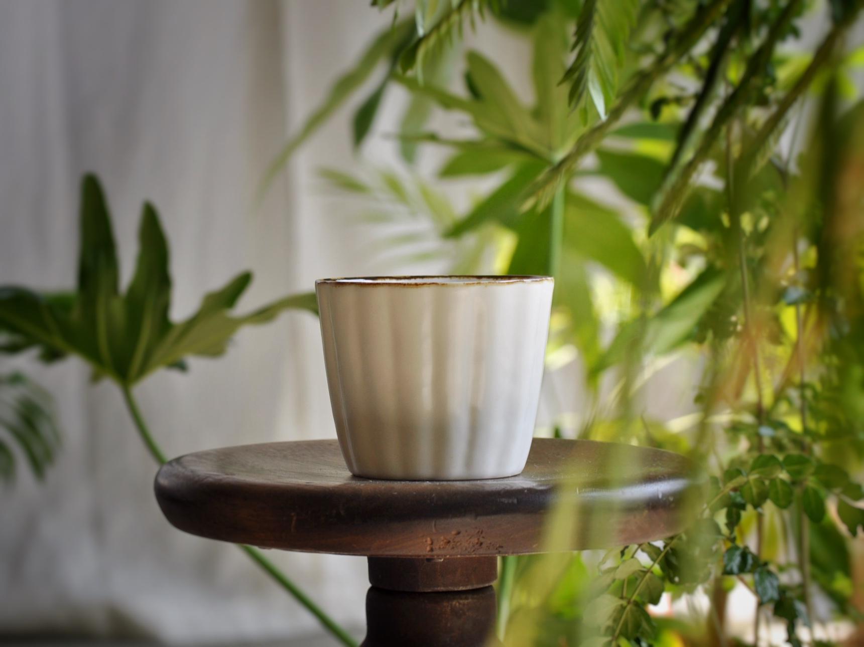 pick up item | 田屋道子さんのカップ